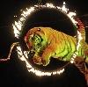 Цирки в Бакшеево
