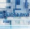 Выставки в Бакшеево